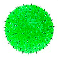 "50 Light 6"" Minisphere Green"